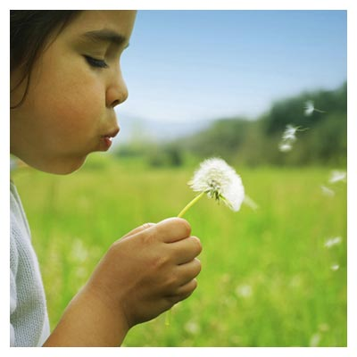 دانلود عکس فوت کردن قاصدک در هوا توسط یک کودک در چمنزار سرسبز