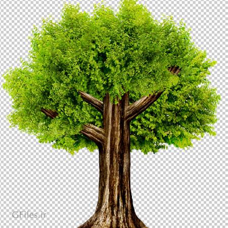 دانلود تصویر دوربری شده درخت کارتونی با پسوند png